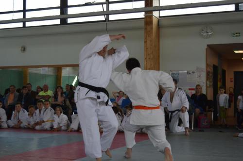 50ans_Jujitsu